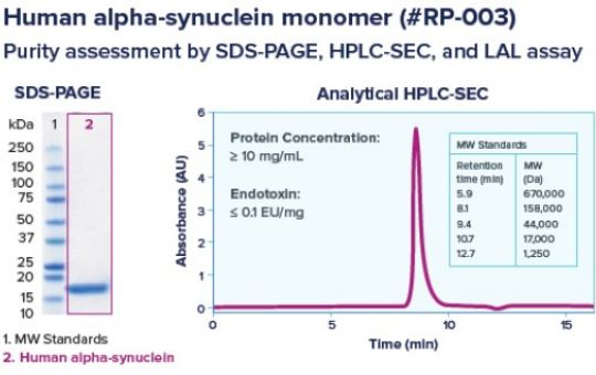 Proteos alpha-synuclein recombinant protein