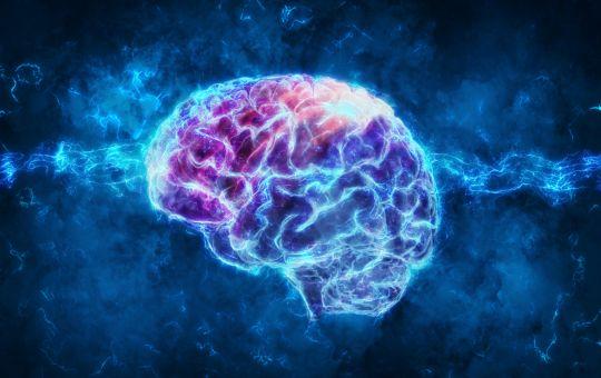 Proteos Neuroscience Brain Research