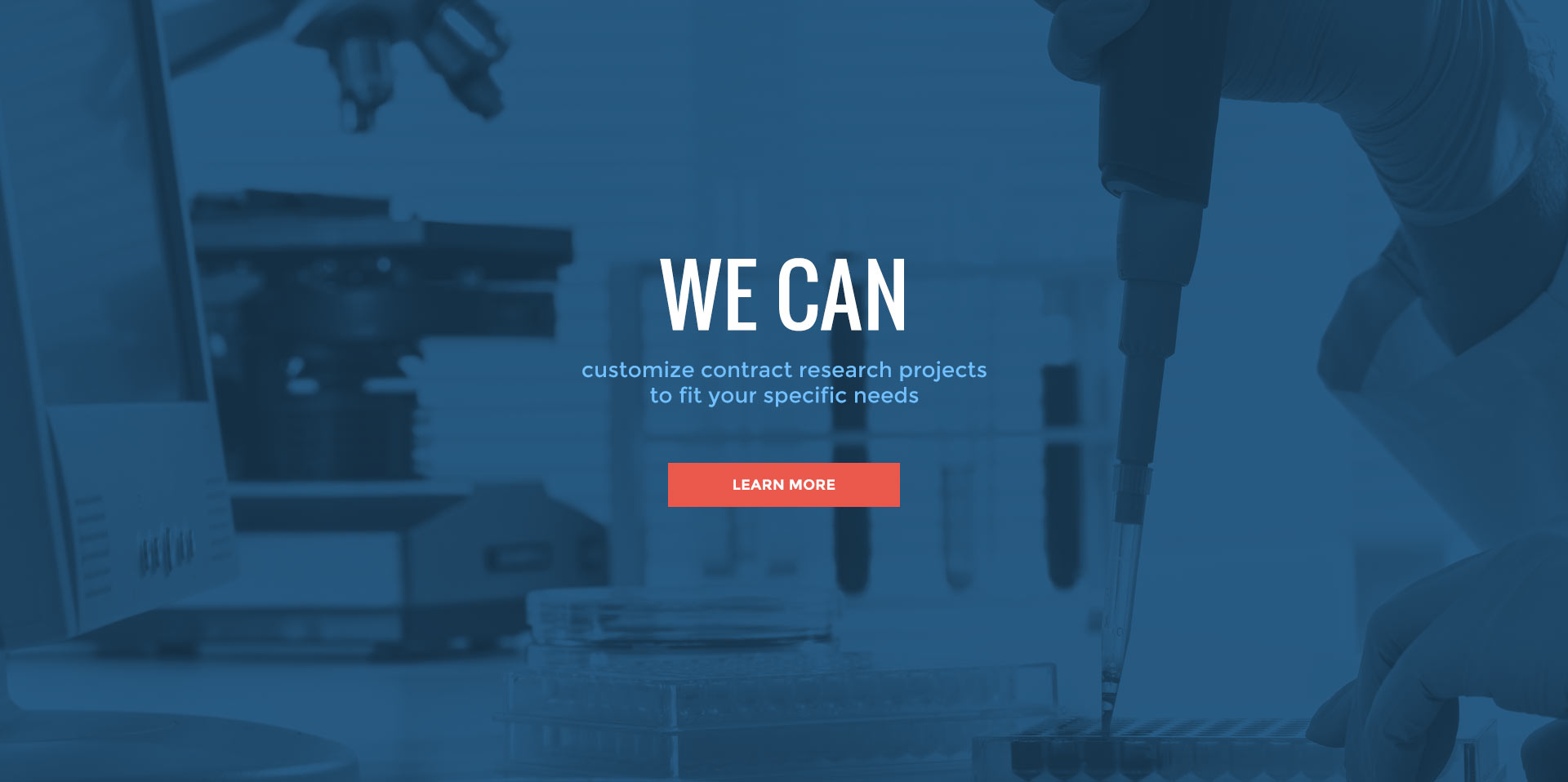 We Can customize research projects
